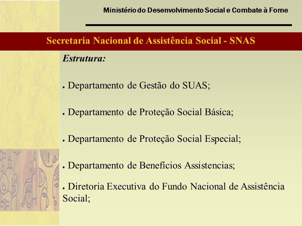 Ministério do Desenvolvimento Social e Combate à Fome Secretaria Nacional de Assistência Social - SNAS Estrutura: Departamento de Gestão do SUAS; Depa