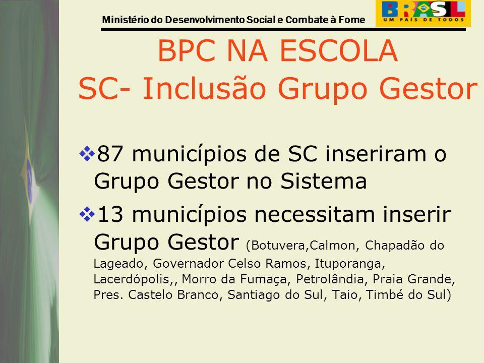 Ministério do Desenvolvimento Social e Combate à Fome BPC NA ESCOLA SC- Inclusão Grupo Gestor 87 municípios de SC inseriram o Grupo Gestor no Sistema