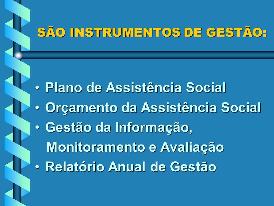 SÃO INSTRUMENTOS DE GESTÃO: Plano de Assistência SocialPlano de Assistência Social Orçamento da Assistência SocialOrçamento da Assistência Social Gestão da Informação,Gestão da Informação, Monitoramento e Avaliação Monitoramento e Avaliação Relatório Anual de GestãoRelatório Anual de Gestão