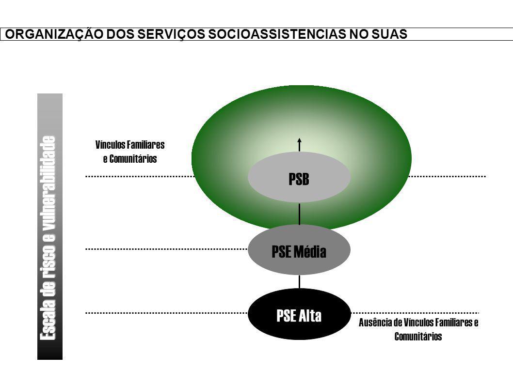 ORGANIZAÇÃO DOS SERVIÇOS SOCIOASSISTENCIAS NO SUAS PSB PSE Média PSE Alta Ausência de Vínculos Familiares e Comunitários Vínculos Familiares e Comunitários Escala de risco e vulnerabilidade