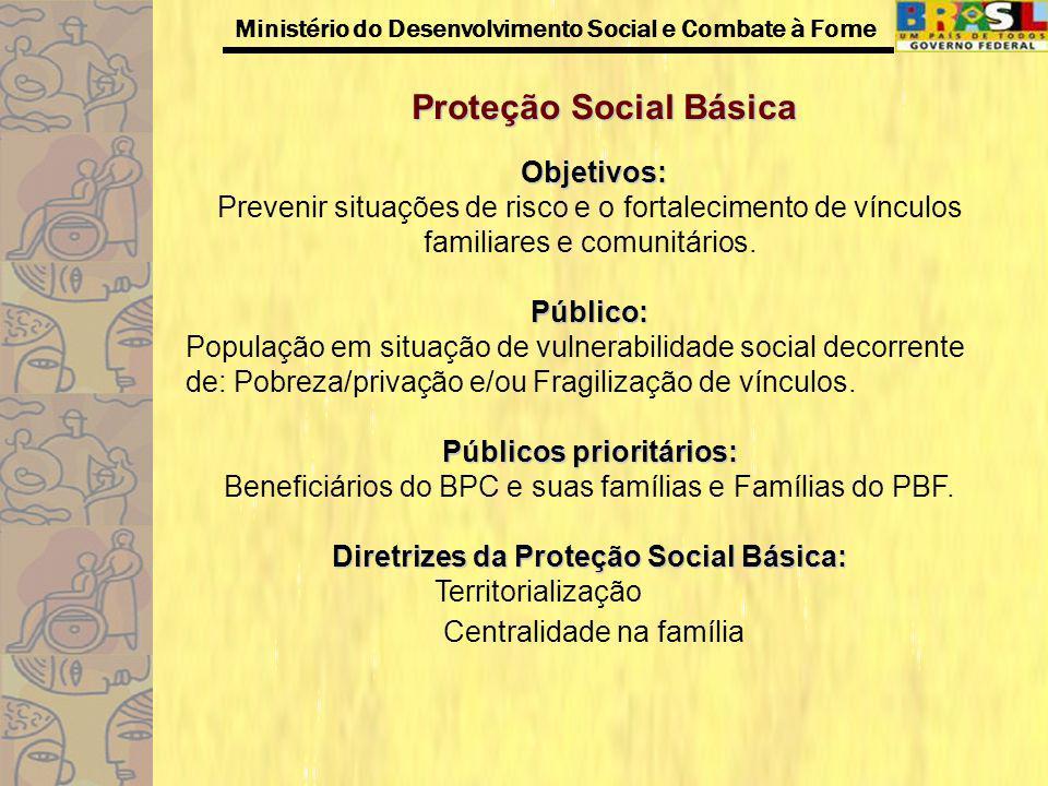 Ministério do Desenvolvimento Social e Combate à Fome Proteção Social Básica Objetivos: Prevenir situações de risco e o fortalecimento de vínculos fam