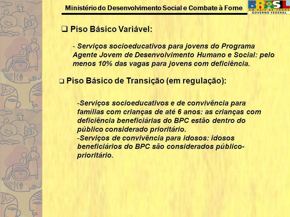 Ministério do Desenvolvimento Social e Combate à Fome Piso Básico Variável: - Serviços socioeducativos para jovens do Programa Agente Jovem de Desenvo