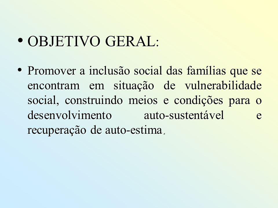 OBJETIVO GERAL : OBJETIVO GERAL : Promover a inclusão social das famílias que se encontram em situação de vulnerabilidade social, construindo meios e