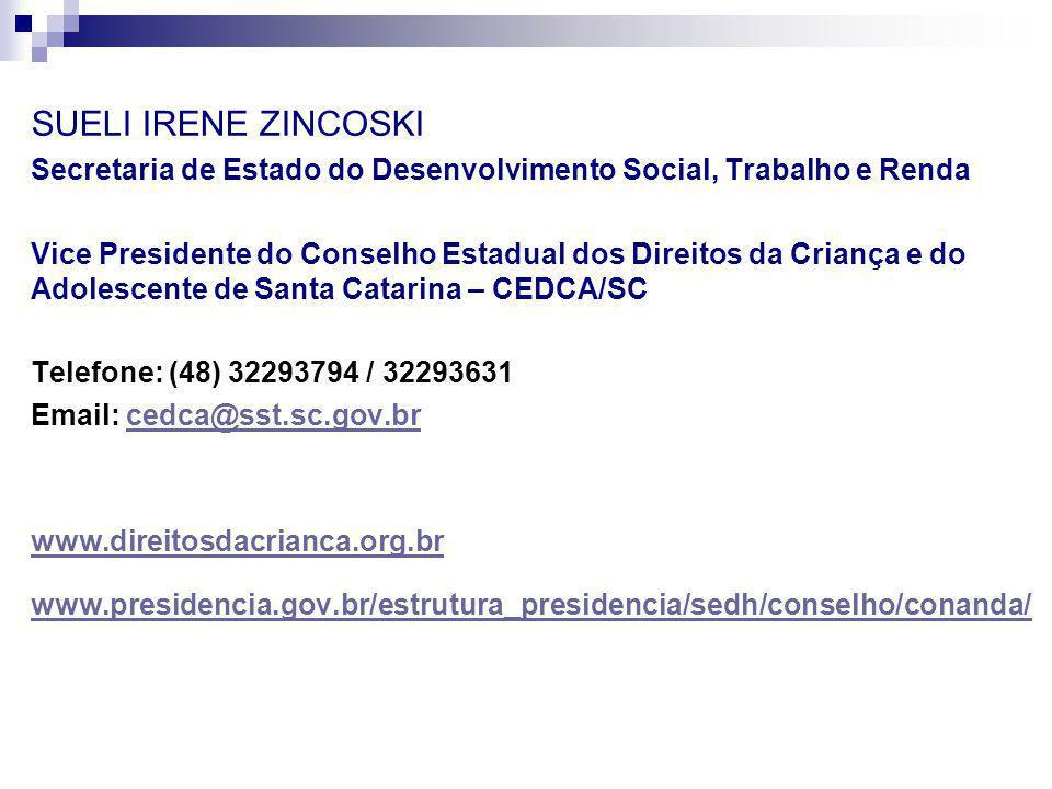 SUELI IRENE ZINCOSKI Secretaria de Estado do Desenvolvimento Social, Trabalho e Renda Vice Presidente do Conselho Estadual dos Direitos da Criança e d