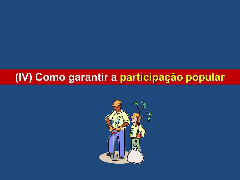 participação popular (IV) Como garantir a participação popular