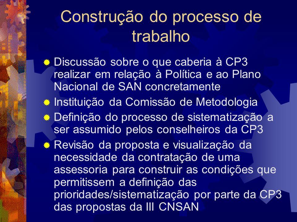 Construção do processo de trabalho Discussão sobre o que caberia à CP3 realizar em relação à Política e ao Plano Nacional de SAN concretamente Institu