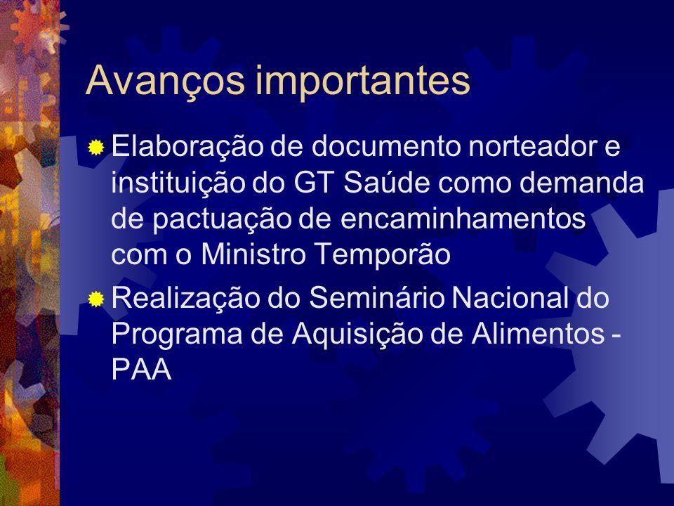 Avanços importantes Elaboração de documento norteador e instituição do GT Saúde como demanda de pactuação de encaminhamentos com o Ministro Temporão R