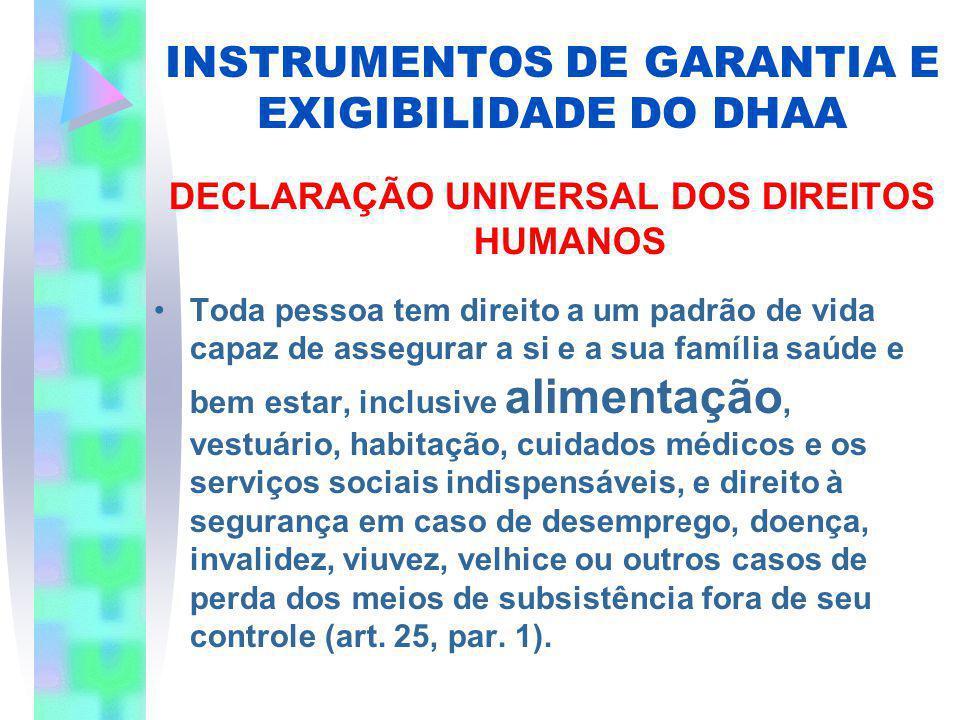INSTRUMENTOS DE GARANTIA E EXIGIBILIDADE DO DHAA DECLARAÇÃO UNIVERSAL DOS DIREITOS HUMANOS Toda pessoa tem direito a um padrão de vida capaz de assegu