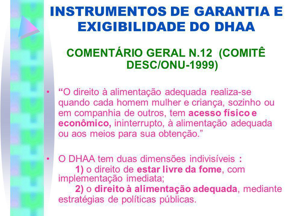 INSTRUMENTOS DE GARANTIA E EXIGIBILIDADE DO DHAA COMENTÁRIO GERAL N.12 (COMITÊ DESC/ONU-1999) O direito à alimentação adequada realiza-se quando cada