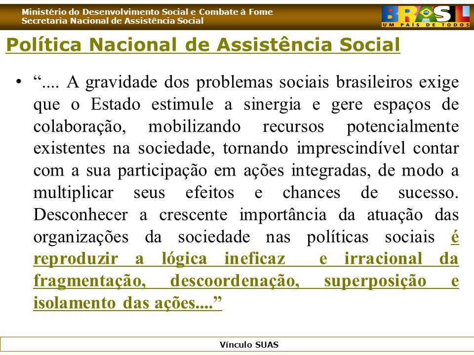 Ministério do Desenvolvimento Social e Combate à Fome Secretaria Nacional de Assistência Social Vínculo SUAS.... A gravidade dos problemas sociais bra