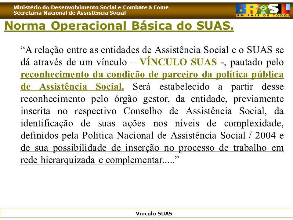 Ministério do Desenvolvimento Social e Combate à Fome Secretaria Nacional de Assistência Social Vínculo SUAS A relação entre as entidades de Assistênc