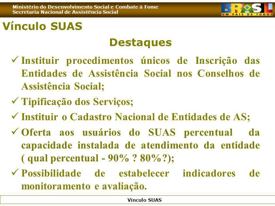 Ministério do Desenvolvimento Social e Combate à Fome Secretaria Nacional de Assistência Social Vínculo SUAS Destaques Instituir procedimentos únicos