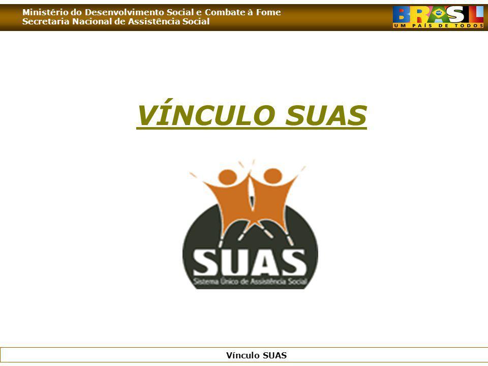 Ministério do Desenvolvimento Social e Combate à Fome Secretaria Nacional de Assistência Social Vínculo SUAS VÍNCULO SUAS