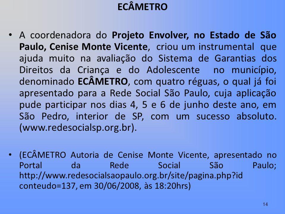 ECÂMETRO A coordenadora do Projeto Envolver, no Estado de São Paulo, Cenise Monte Vicente, criou um instrumental que ajuda muito na avaliação do Siste