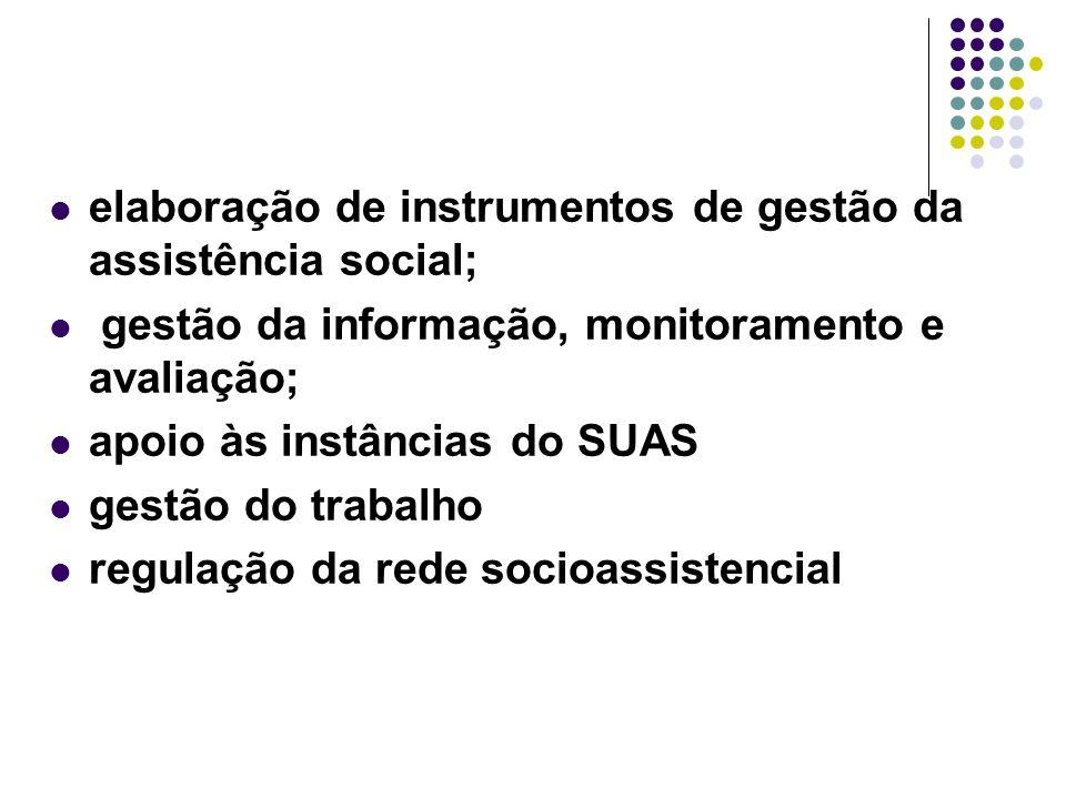 elaboração de instrumentos de gestão da assistência social; gestão da informação, monitoramento e avaliação; apoio às instâncias do SUAS gestão do tra