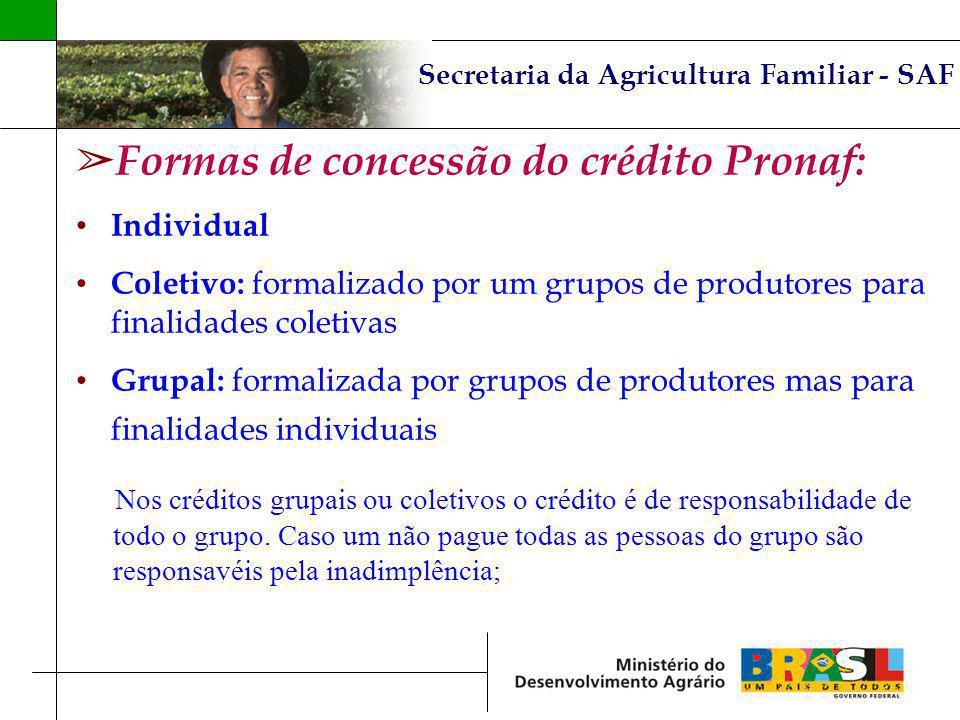 Secretaria da Agricultura Familiar - SAF Formas de concessão do crédito Pronaf: Individual Coletivo: formalizado por um grupos de produtores para fina