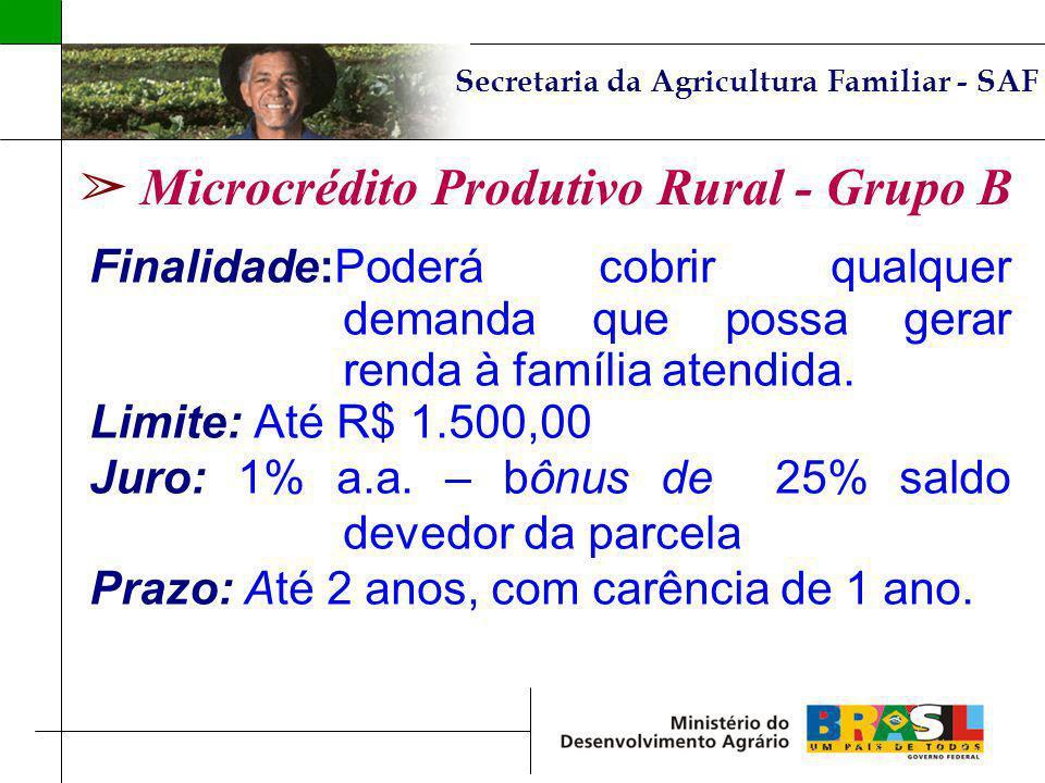 Secretaria da Agricultura Familiar - SAF Microcrédito Produtivo Rural - Grupo B Finalidade:Poderá cobrir qualquer demanda que possa gerar renda à famí