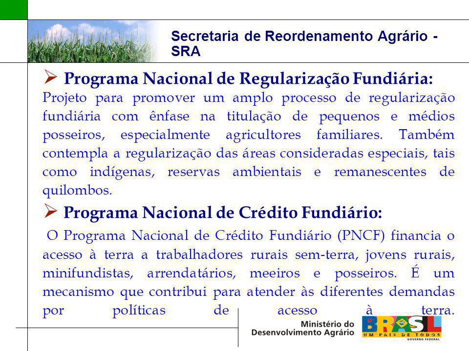 Secretaria de Reordenamento Agrário - SRA Programa Nacional de Regularização Fundiária: Projeto para promover um amplo processo de regularização fundi