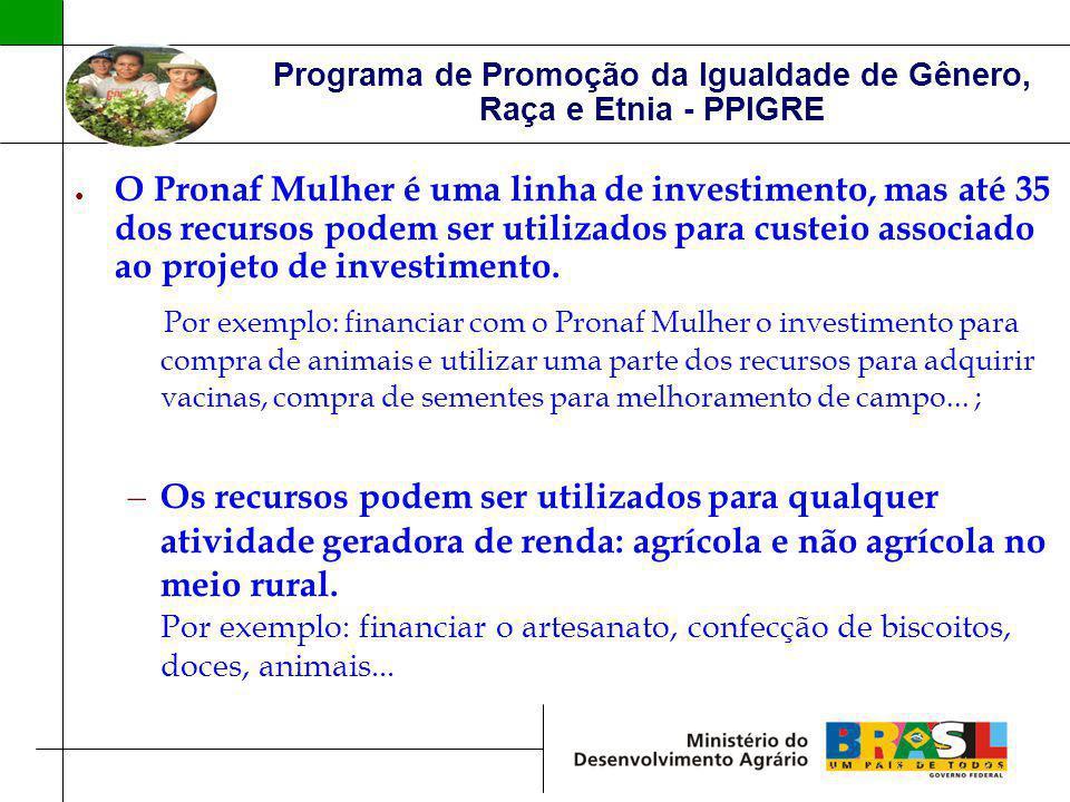 Programa de Promoção da Igualdade de Gênero, Raça e Etnia - PPIGRE O Pronaf Mulher é uma linha de investimento, mas até 35 dos recursos podem ser util