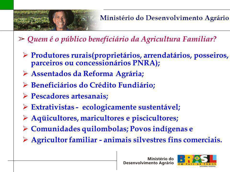 Ministério do Desenvolvimento Agrário Quem é o público beneficiário da Agricultura Familiar? Produtores rurais(proprietários, arrendatários, posseiros
