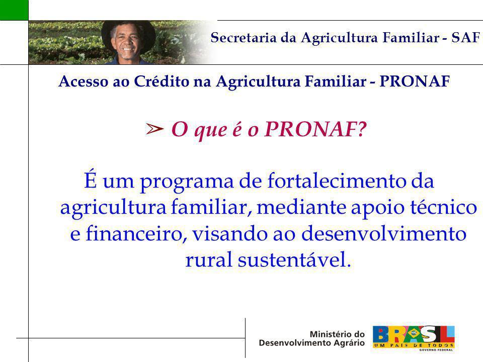 Secretaria da Agricultura Familiar - SAF Acesso ao Crédito na Agricultura Familiar - PRONAF O que é o PRONAF? É um programa de fortalecimento da agric