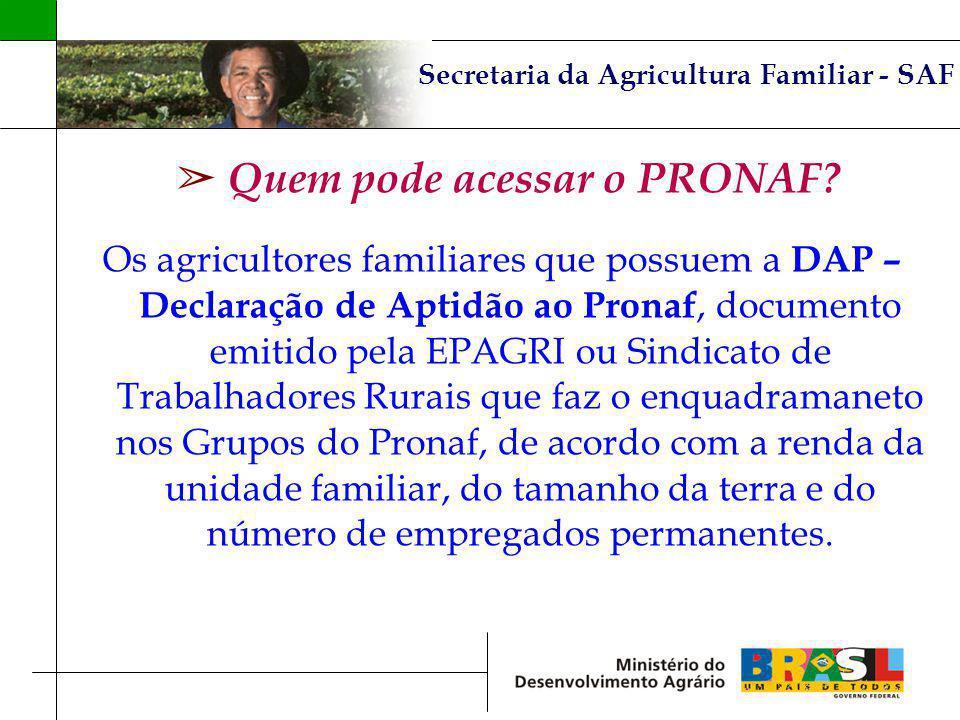 Secretaria da Agricultura Familiar - SAF Quem pode acessar o PRONAF? Os agricultores familiares que possuem a DAP – Declaração de Aptidão ao Pronaf, d