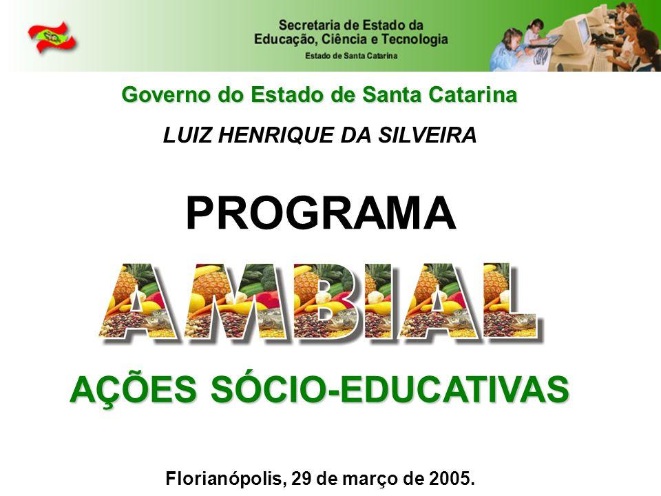 Governo do Estado de Santa Catarina LUIZ HENRIQUE DA SILVEIRA AÇÕES SÓCIO-EDUCATIVAS PROGRAMA Florianópolis, 29 de março de 2005.