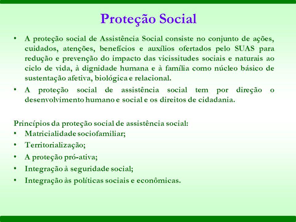 Proteção Social A proteção social de Assistência Social consiste no conjunto de ações, cuidados, atenções, benefícios e auxílios ofertados pelo SUAS p