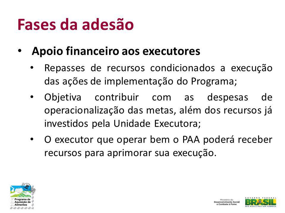 Fases da adesão Apoio financeiro aos executores Repasses de recursos condicionados a execução das ações de implementação do Programa; Objetiva contrib