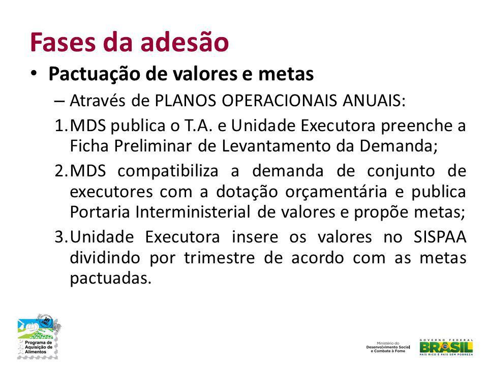 Fases da adesão Pactuação de valores e metas – Através de PLANOS OPERACIONAIS ANUAIS: 1.MDS publica o T.A. e Unidade Executora preenche a Ficha Prelim