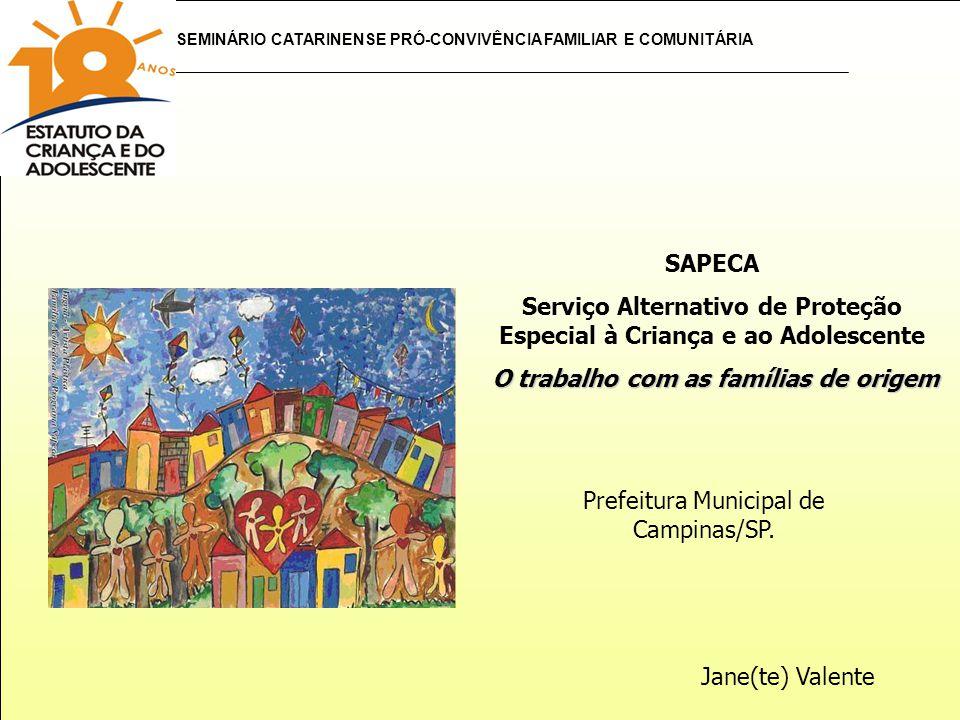 SEMINÁRIO CATARINENSE PRÓ-CONVIVÊNCIA FAMILIAR E COMUNITÁRIA SAPECA Serviço Alternativo de Proteção Especial à Criança e ao Adolescente O trabalho com