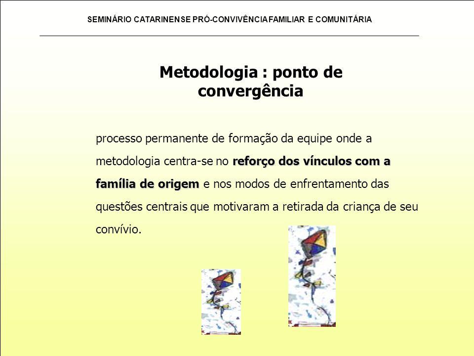 SEMINÁRIO CATARINENSE PRÓ-CONVIVÊNCIA FAMILIAR E COMUNITÁRIA reforço dos vínculos com a família de origem processo permanente de formação da equipe on