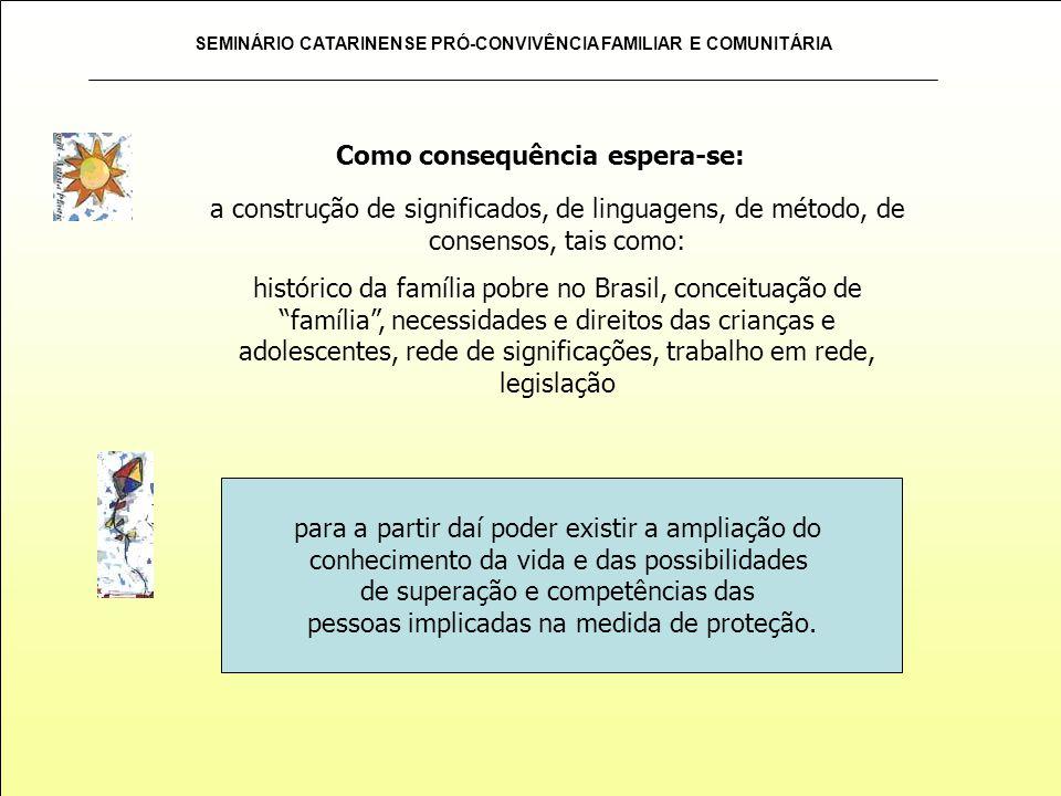 SEMINÁRIO CATARINENSE PRÓ-CONVIVÊNCIA FAMILIAR E COMUNITÁRIA Como consequência espera-se: a construção de significados, de linguagens, de método, de c