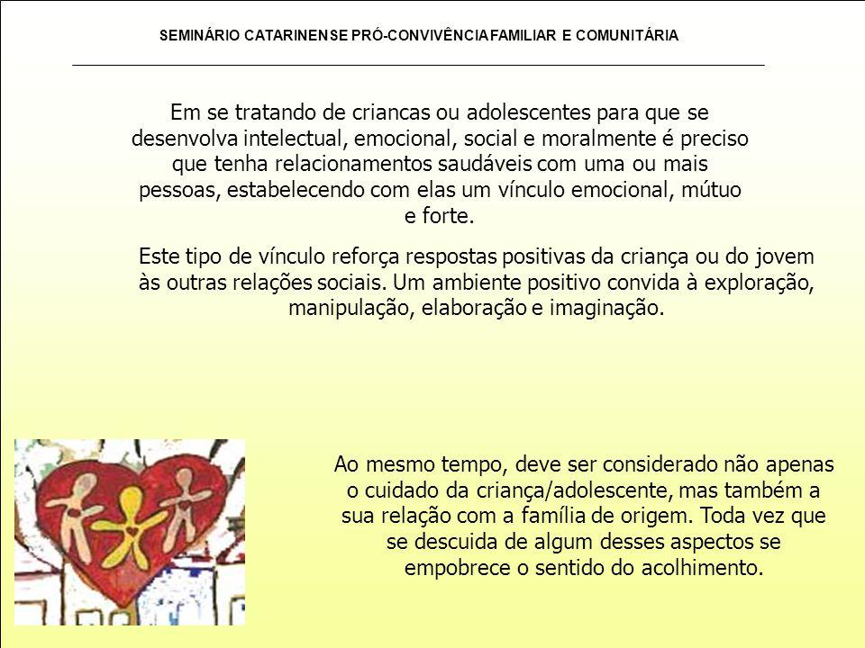 SEMINÁRIO CATARINENSE PRÓ-CONVIVÊNCIA FAMILIAR E COMUNITÁRIA Este tipo de vínculo reforça respostas positivas da criança ou do jovem às outras relaçõe