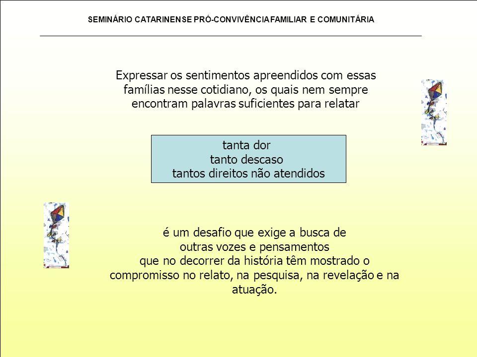 SEMINÁRIO CATARINENSE PRÓ-CONVIVÊNCIA FAMILIAR E COMUNITÁRIA FAMÍLIA NO SAPECA abrigo c.s.