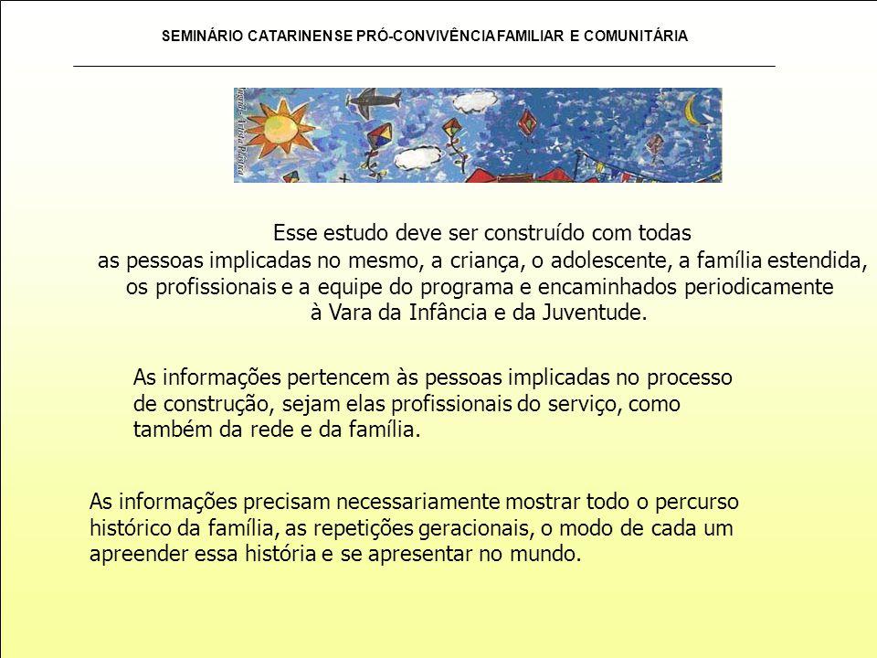 SEMINÁRIO CATARINENSE PRÓ-CONVIVÊNCIA FAMILIAR E COMUNITÁRIA As informações pertencem às pessoas implicadas no processo de construção, sejam elas prof