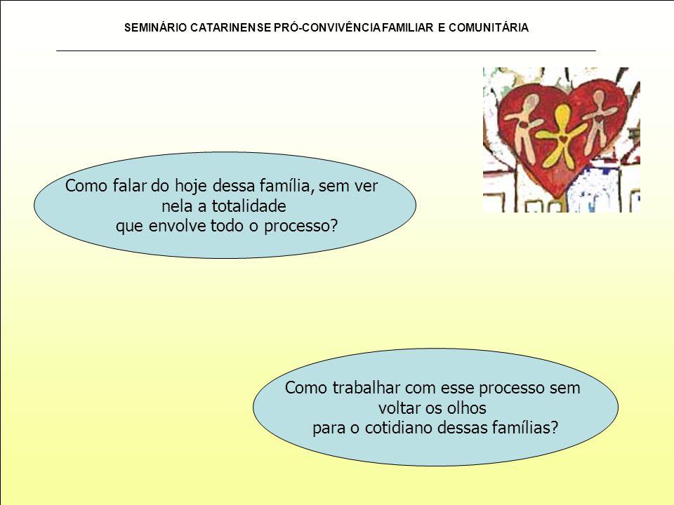 SEMINÁRIO CATARINENSE PRÓ-CONVIVÊNCIA FAMILIAR E COMUNITÁRIA As informações pertencem às pessoas implicadas no processo de construção, sejam elas profissionais do serviço, como também da rede e da família.