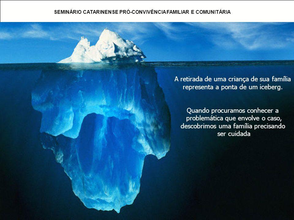 SEMINÁRIO CATARINENSE PRÓ-CONVIVÊNCIA FAMILIAR E COMUNITÁRIA A retirada de uma criança de sua família representa a ponta de um iceberg. Quando procura