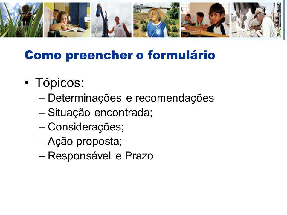 Como preencher o formulário Tópicos: –Determinações e recomendações –Situação encontrada; –Considerações; –Ação proposta; –Responsável e Prazo