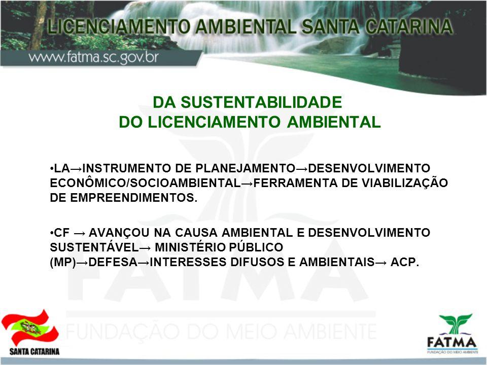 DA SUSTENTABILIDADE DO LICENCIAMENTO AMBIENTAL LAINSTRUMENTO DE PLANEJAMENTODESENVOLVIMENTO ECONÔMICO/SOCIOAMBIENTALFERRAMENTA DE VIABILIZAÇÃO DE EMPR