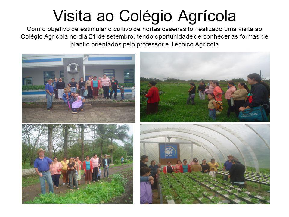 Visita ao Colégio Agrícola Com o objetivo de estimular o cultivo de hortas caseiras foi realizado uma visita ao Colégio Agrícola no dia 21 de setembro