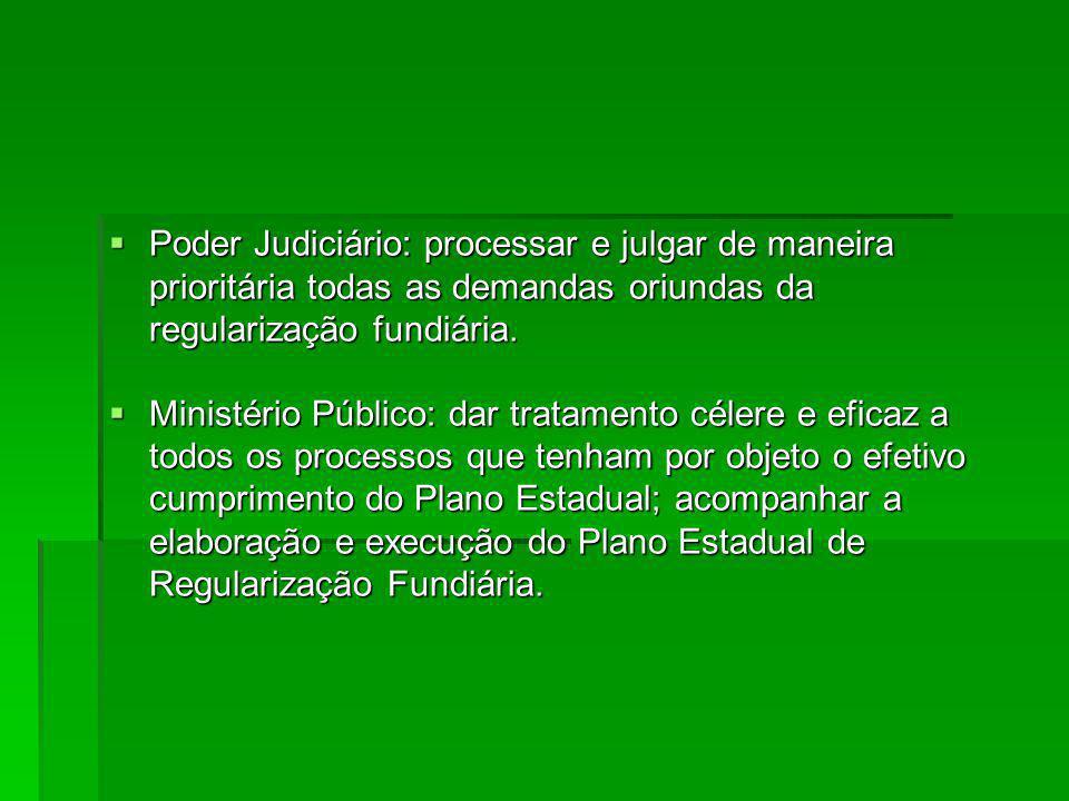 Poder Judiciário: processar e julgar de maneira prioritária todas as demandas oriundas da regularização fundiária.