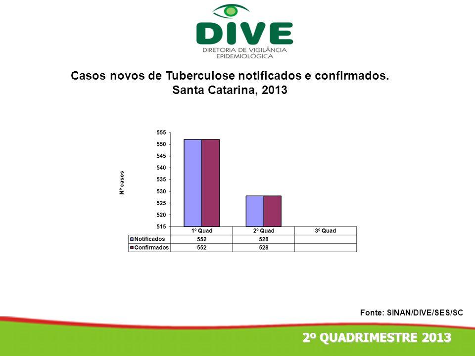 Casos novos de Tuberculose notificados e confirmados. Santa Catarina, 2013 Fonte: SINAN/DIVE/SES/SC 2º QUADRIMESTRE 2013