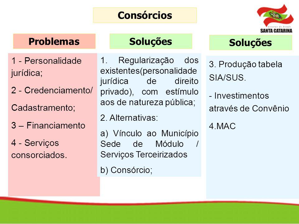 1 - Personalidade jurídica; 2 - Credenciamento/ Cadastramento; 3 – Financiamento 4 - Serviços consorciados. Problemas 1. Regularização dos existentes(