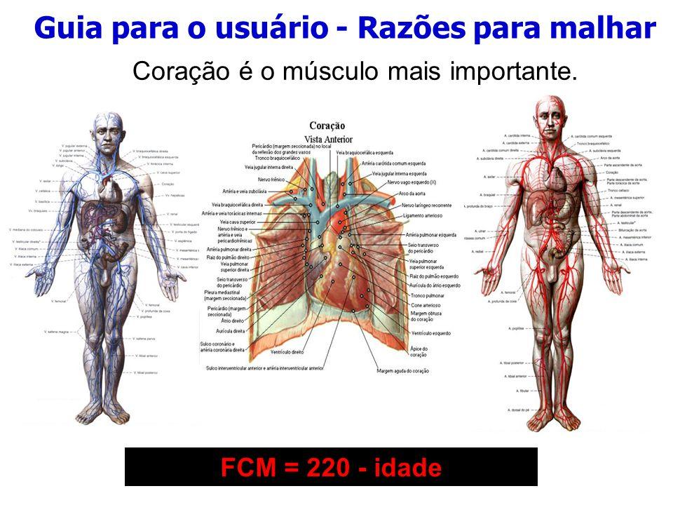 Guia para o usuário - Razões para malhar 1 - Massa Muscular e Força 2 - Obesidade IMC=Peso(kg) h 2 3 - Metabolismo basal 4 - Doenças Cardiovasculares Desnutrição, 14,5 Abaixo do peso, até 20 Peso normal, 20 a 24,9 Sobrepeso, 25 a 29,9 Obeso, de 30,0 a 39,9 Obesidade Mórbida, de 40