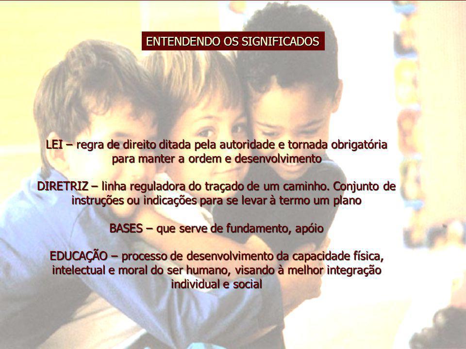 EDUCAÇÃO INFANTIL NO PNE Execução de Metas N.