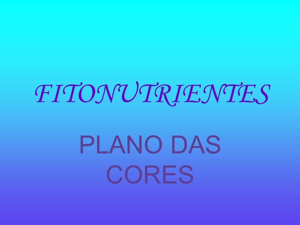 FITONUTRIENTES PLANO DAS CORES
