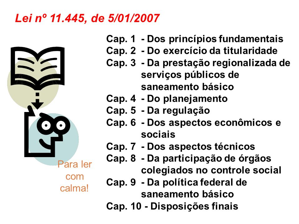 Cap. 1 - Dos princípios fundamentais Cap. 2 - Do exercício da titularidade Cap. 3 - Da prestação regionalizada de serviços públicos de saneamento bási