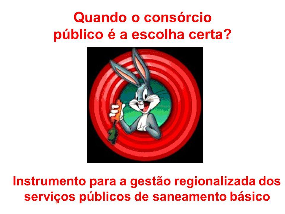 Quando o consórcio público é a escolha certa? Instrumento para a gestão regionalizada dos serviços públicos de saneamento básico