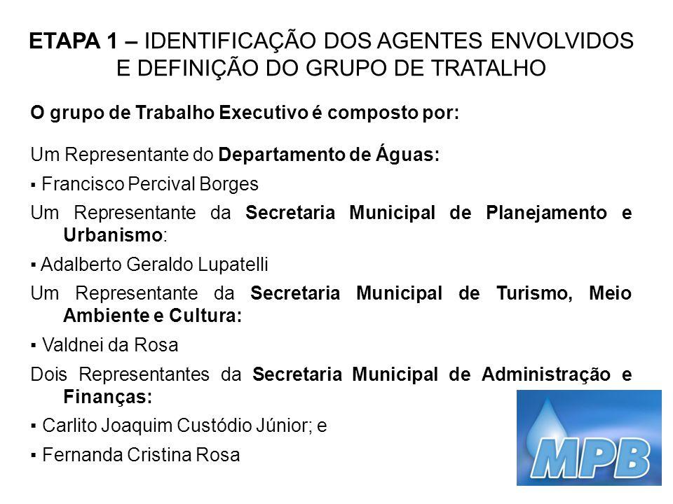 ETAPA 1 – IDENTIFICAÇÃO DOS AGENTES ENVOLVIDOS E DEFINIÇÃO DO GRUPO DE TRATALHO O grupo de Trabalho Executivo é composto por: Um Representante do Depa
